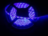 FITA LED 24V 5050 AZUL 300LEDS (5MTS)