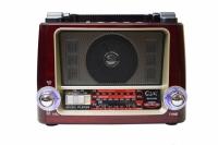 RADIO PORTATIL FM/USB/SD/SW 3 BANDAS GOAL GL-0116U